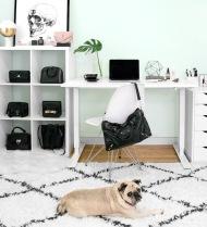 Becca Risa Luna Home Office Fashion Pug
