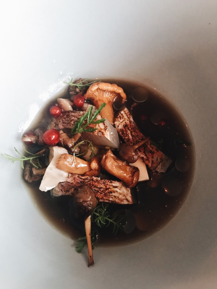 Septime restaurant review | Chilled mushroom broth